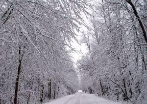 winterdriving